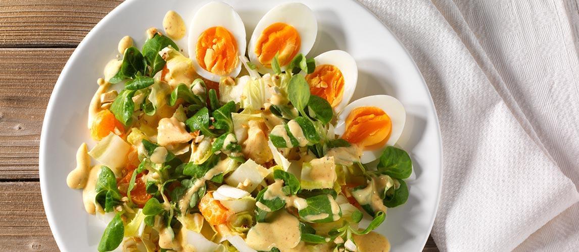 chicoree eier salat mit mandarinen blog desktop